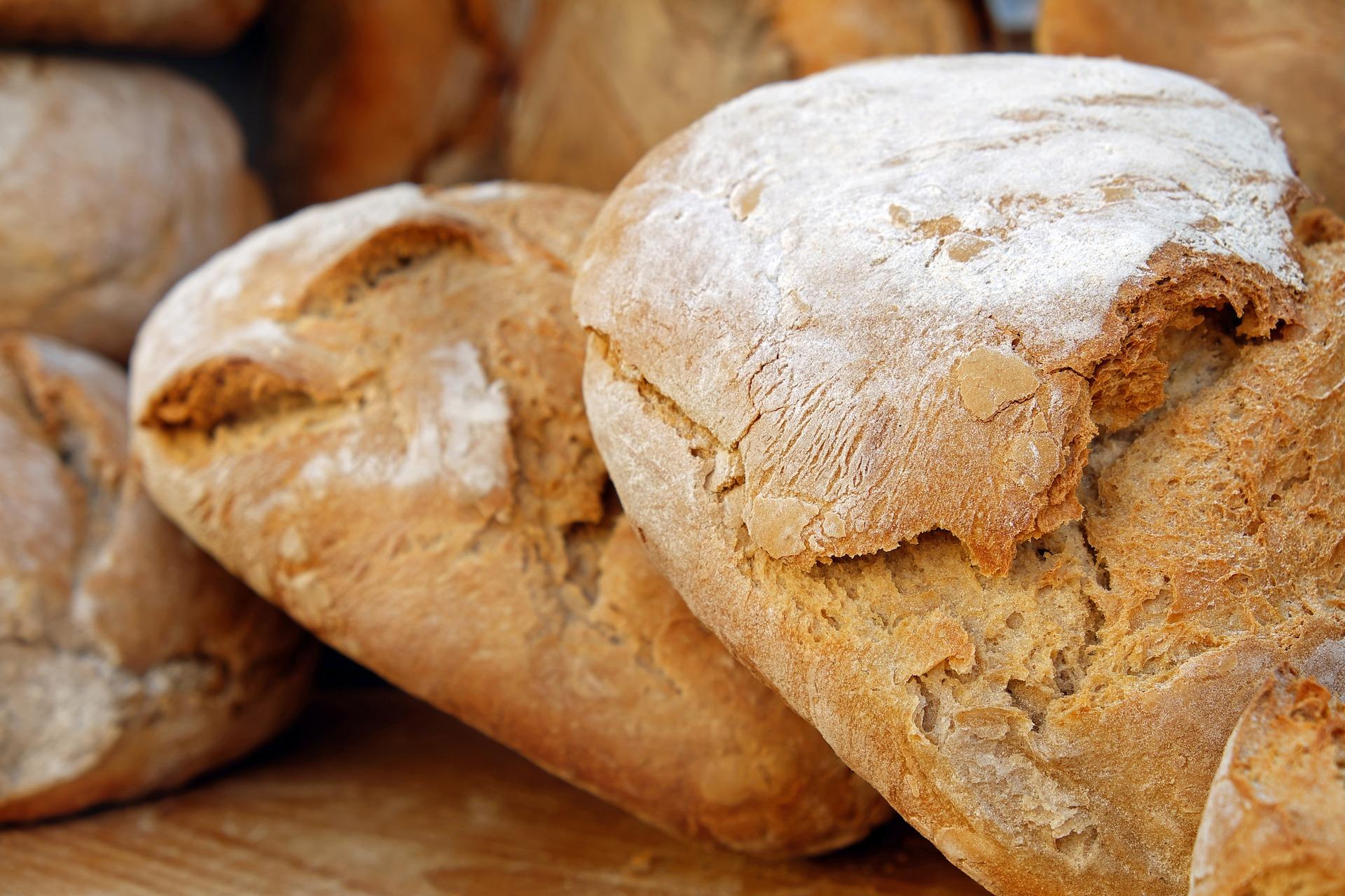 小腹がすいたときに食べられるおすすめカレーパンがあるSA7選