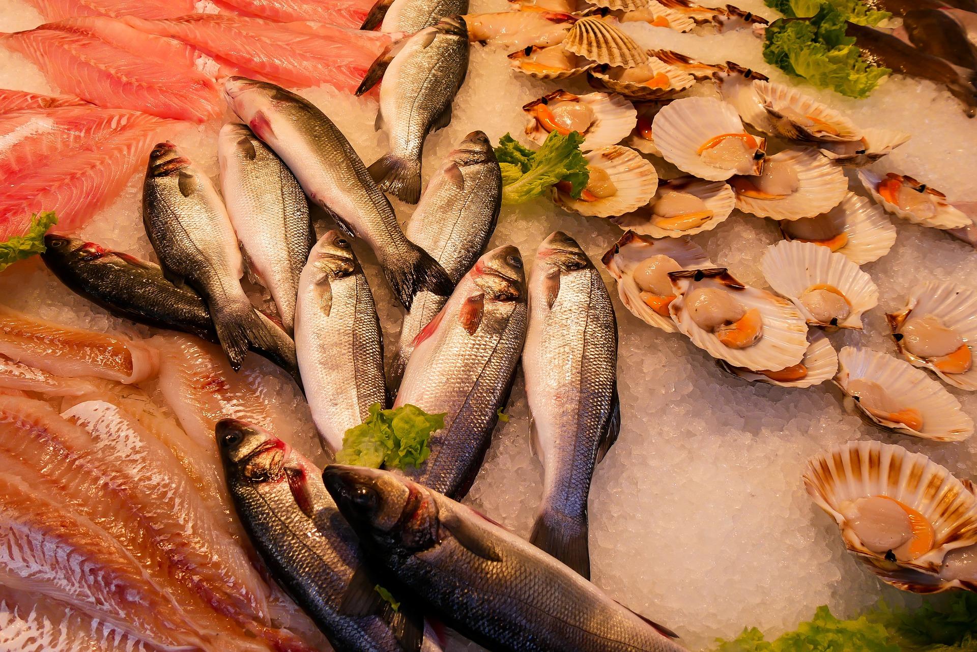 いわき・ら・ら・ミュウは新鮮魚介類だけではなく遊べる施設もたくさん